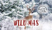 wild-mas